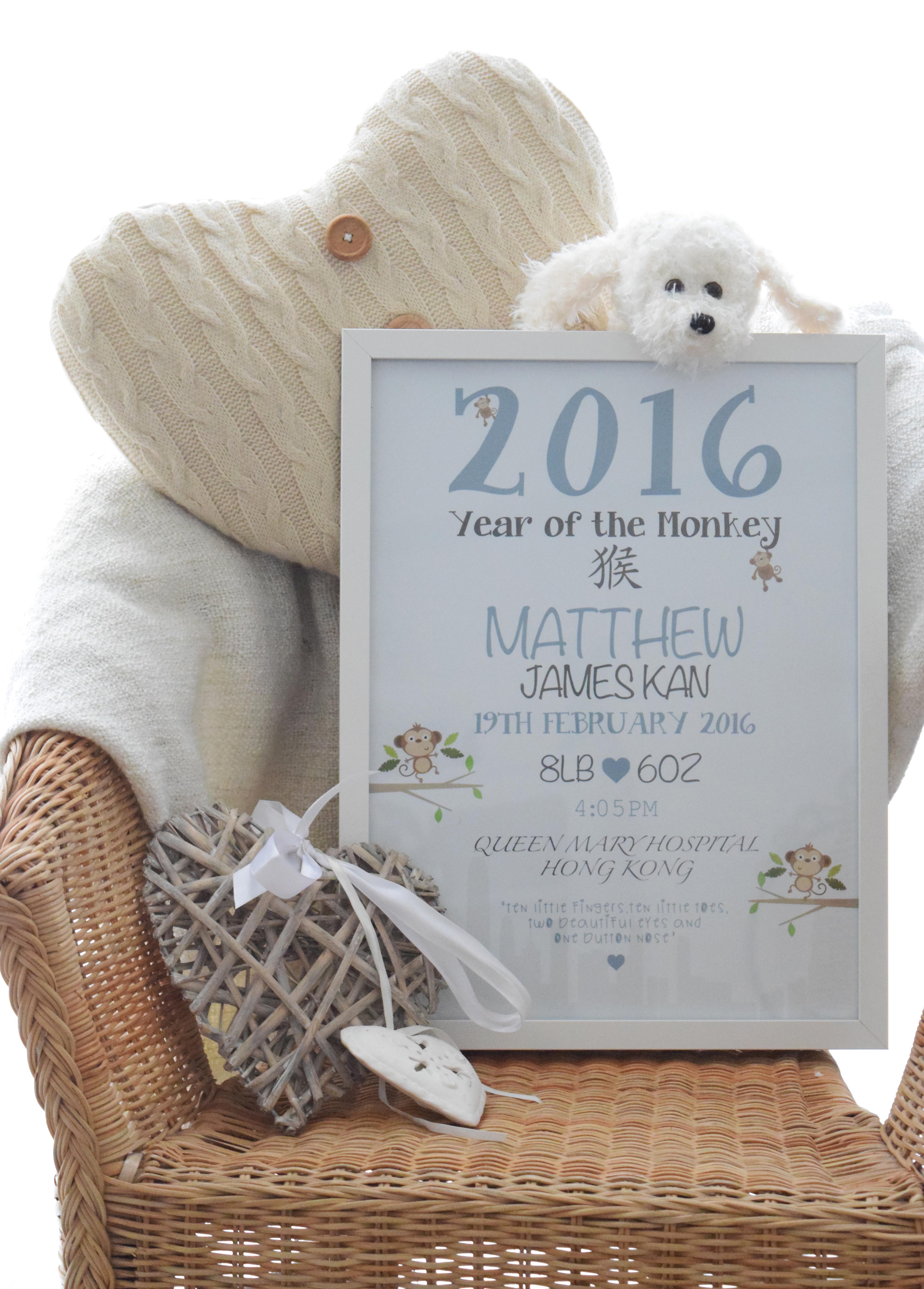 Baby boy 2016 monkey2