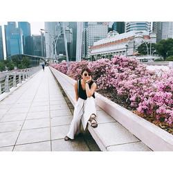 Hello Singapore 🌸