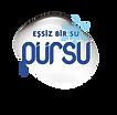 pursu logo-web.png