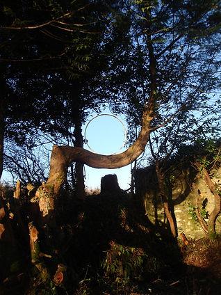 Artfarm Tree Circle