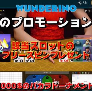 wanderino_ January.promotion