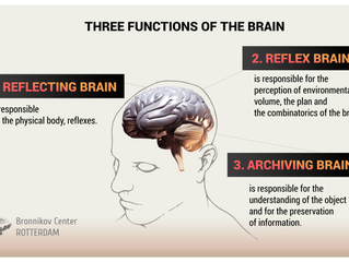 THREE FUNCTIONS OF THE BRAIN