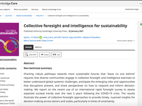 Collective foresight and intelligence for sustainability