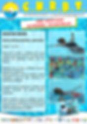 natation senior.jpg