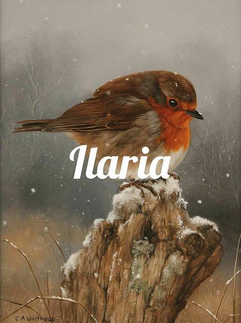 Prodotti Ilaria