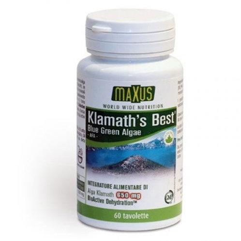 Klamat Best (scadenza 11/20) - Maxus + una omaggio