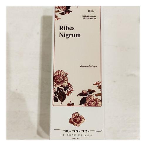 Ribes nigrum mg 100ml