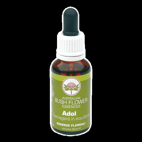 ADOL - Bush Flower - Green Remedies