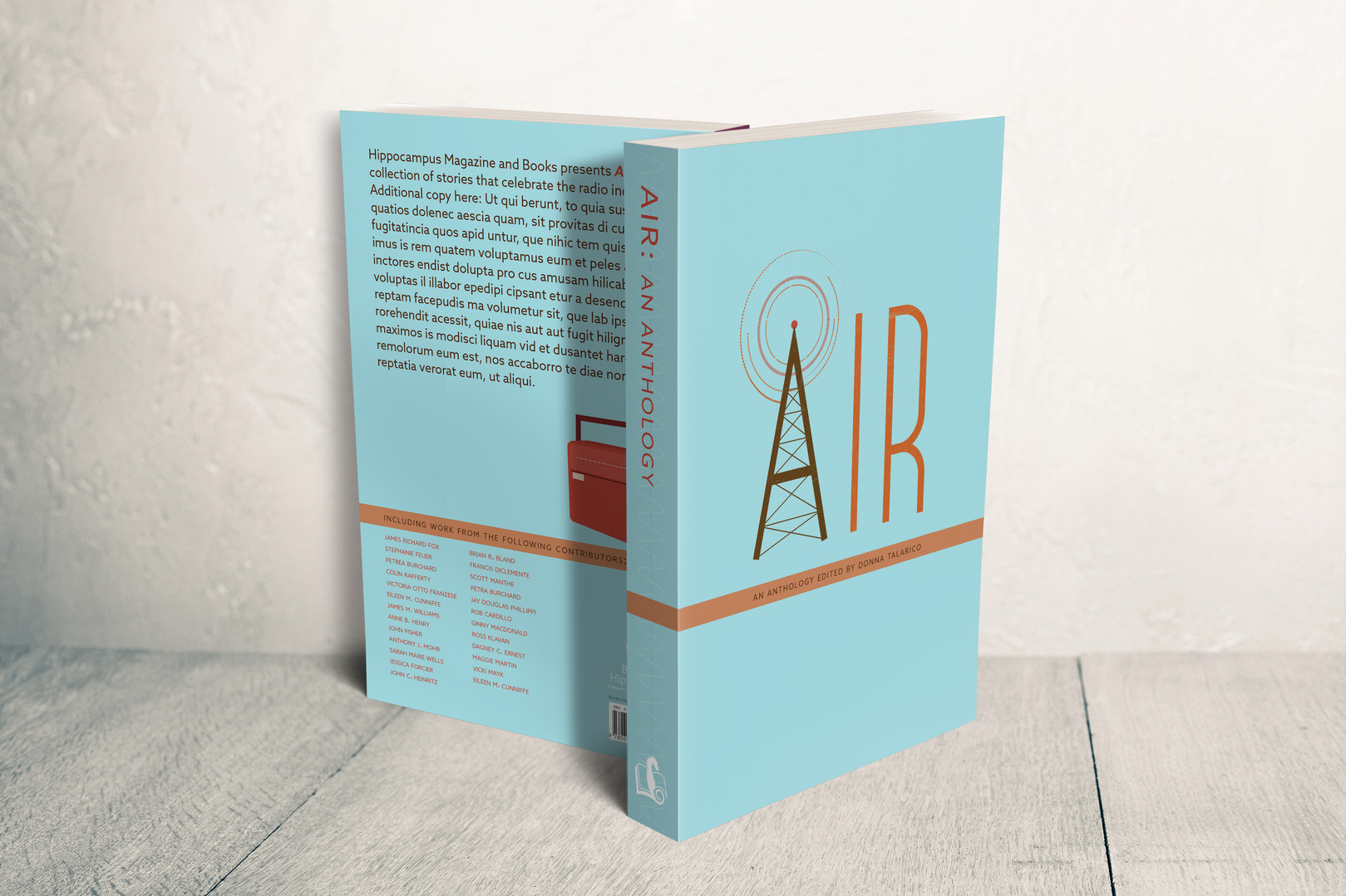 Book cover design for Hippocampus Magazine and Books' Air: An Anthology