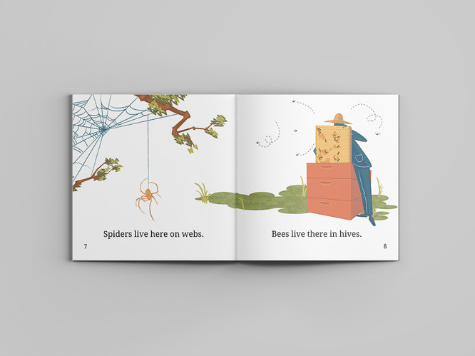 Additional Interior Spread for Early Reader Picture Book