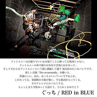 RED in BLUE2.jpg