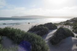 Misty empty beach Western Australia