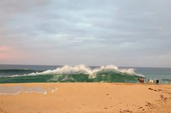 Injidup beach, Australia