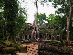 Angkor Wat Temple Complex