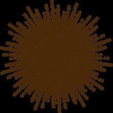 Logo Soul Expression (6).png