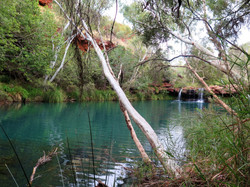 Karijini beautiful pool, Western Australia