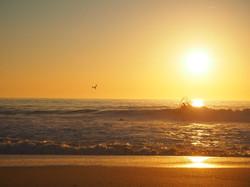 Peniche, World Surf League