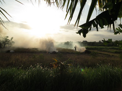 Man that burns his land in Indonesia