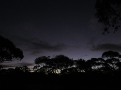 Night sky in the outback