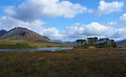 On the road, county Galway