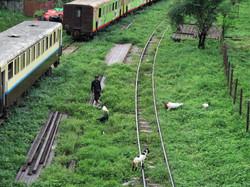 Yangon Trainstation