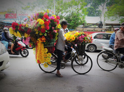Man on the bicycle with a lot of flowers, Hanoi, Vietnam