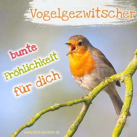 Vogelgezwitscher.png