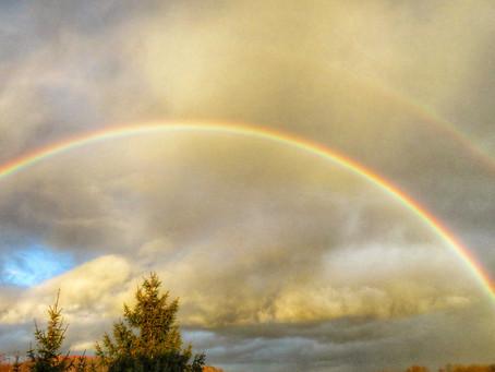 Findespiel 11:   Finde Regenbogen