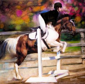 Traceys Champion Rider