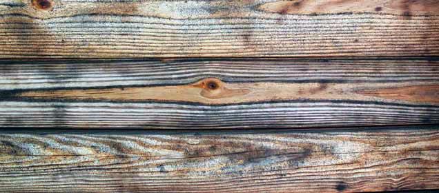 wood-textureweb