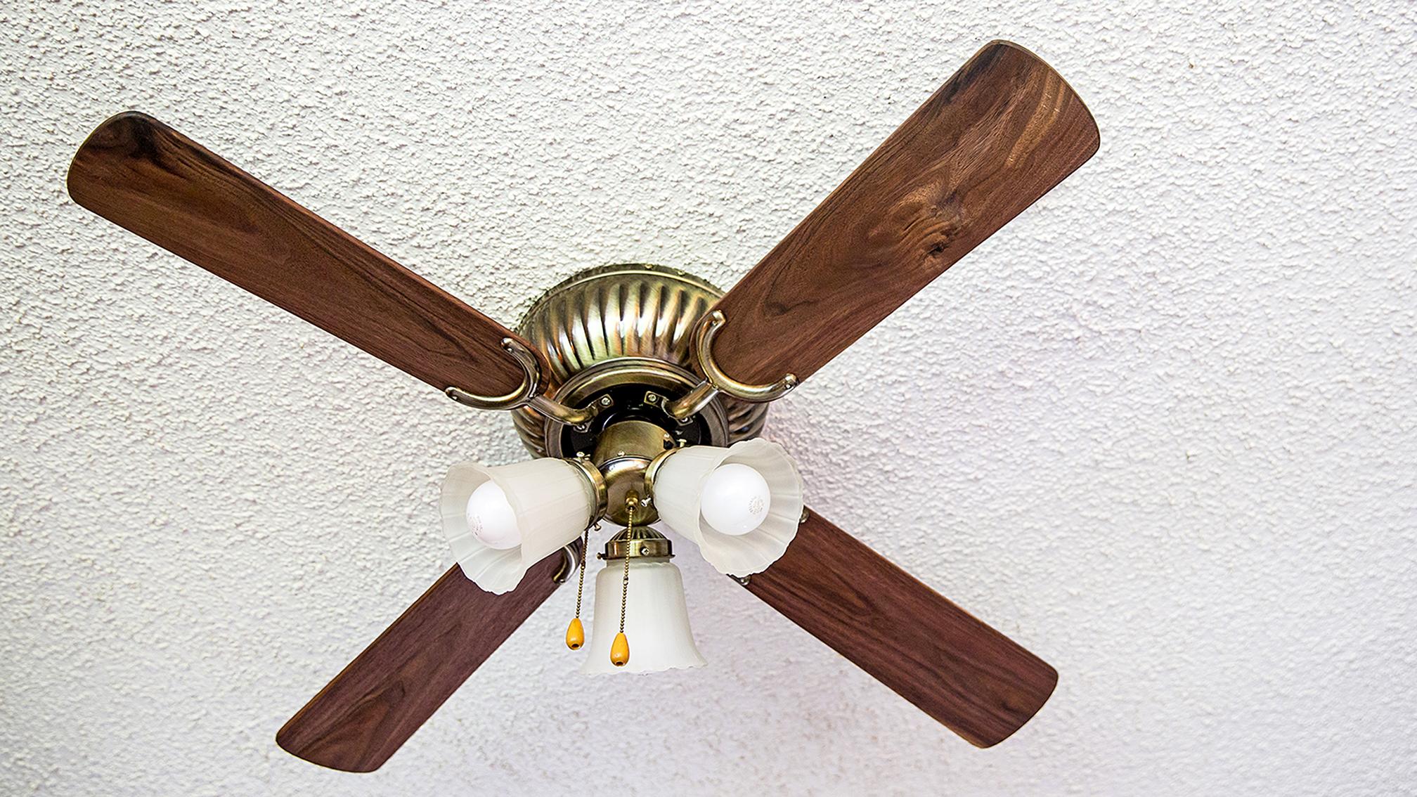 Black Walnut Fan Blades