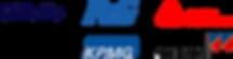 logo stripe 201806.png