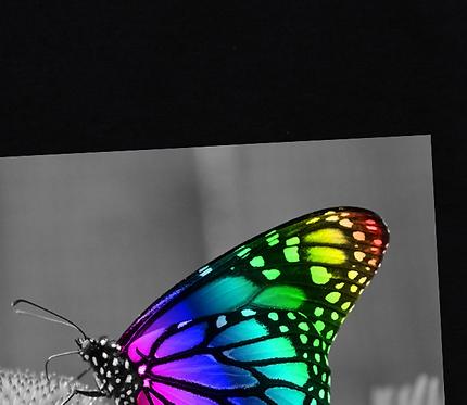 Sublimationstransferdruck farbig