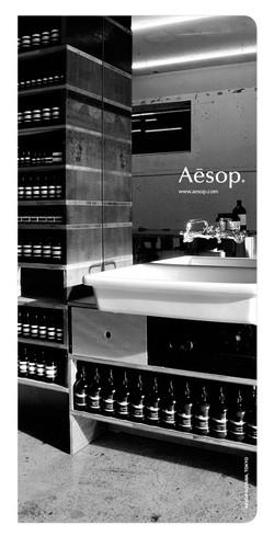 Aesop1