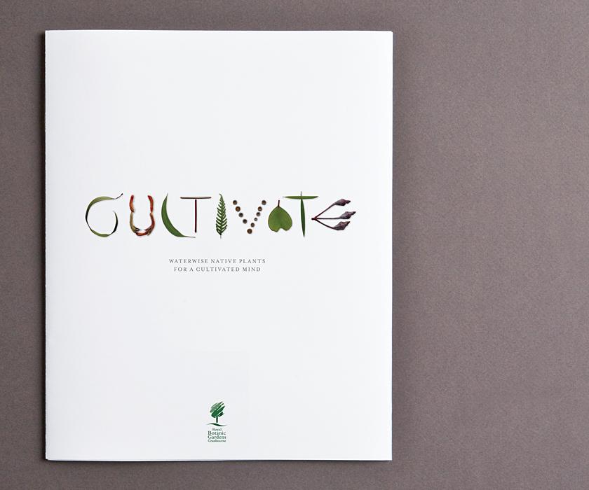 3_cultivate2.jpg