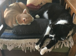 two sleepy cats:  tater tot on the left and Clyde sprawled on the right of an antique Morris chair (circa 1920-30) we refinished