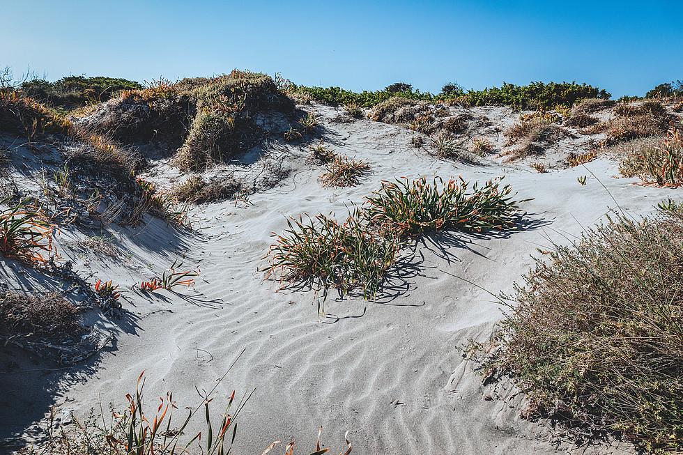 spiaggia marina di sorso