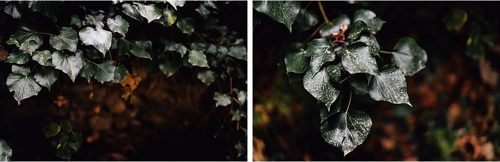 Foto di coppia in Sardegna _ Prematrimoniale romantico nel verde_06.jpg