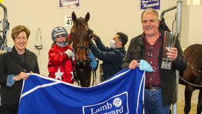 South Coast Arden a real NZ Cup contender