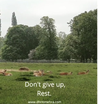 Don't give up, Rest.