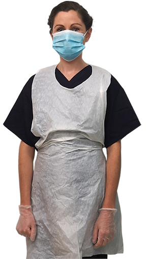 lady-basset-physio-ppe-face-mask.png