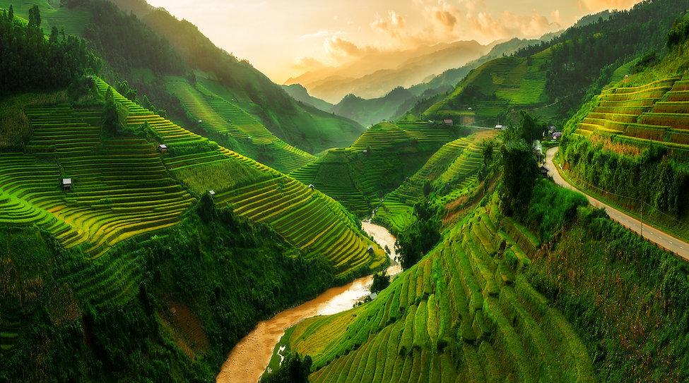 Tee Plantage kleine Auflösung.jpg