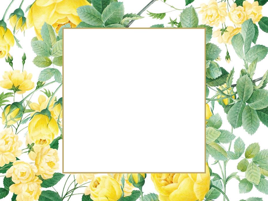 Gelb Blumen.001.jpeg
