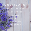 Introducing... Cultivate