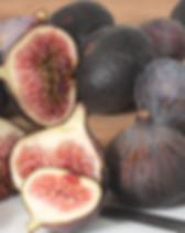 creekstone fig.png