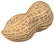 CACAHUATE 3.png