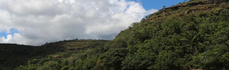 Río Guayabero