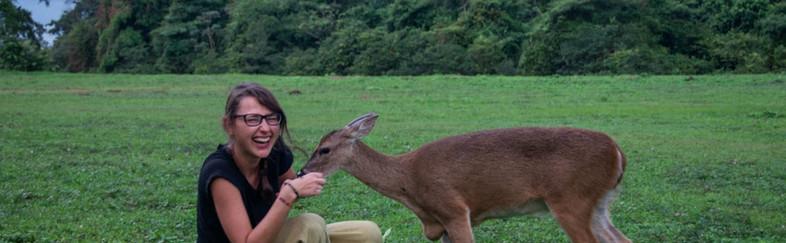 Safari en Casanare