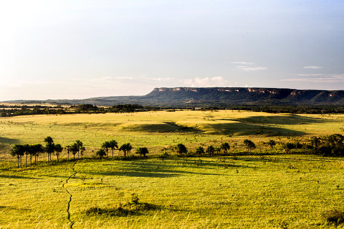 Serranía de La Macarena