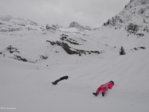 Where to Snowshoe